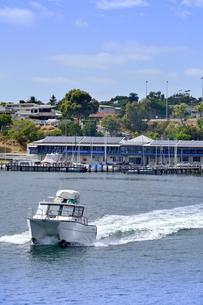 オーストラリア・西オーストラリア州のインド洋沿岸の木々に囲まれたアリーナと船と建物の写真素材 [FYI04301433]