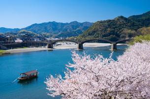 錦帯橋と桜の写真素材 [FYI04301543]