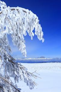 樹氷と白馬連峰など北アルプス遠望の写真素材 [FYI04301633]