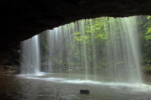 5月 新緑の鍋ヶ滝の写真素材 [FYI04301968]