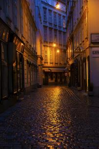 夜明け前のウィーン旧市街 オーストリアの写真素材 [FYI04302094]