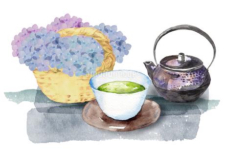 日本茶と紫陽花のイラスト素材 [FYI04302450]