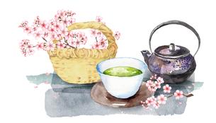 日本茶と桜のイラスト素材 [FYI04302452]