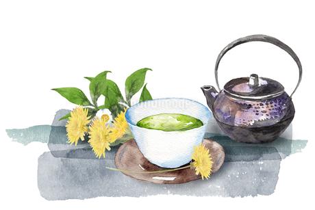 日本茶とたんぽぽのイラスト素材 [FYI04302453]