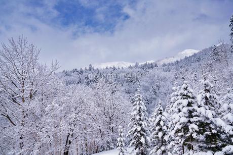 冬の山の写真素材 [FYI04302549]