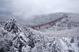 冬の三国峠の写真素材 [FYI04302550]