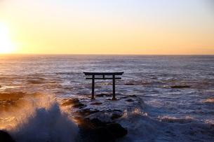 大洗磯前神社の鳥居の写真素材 [FYI04302686]