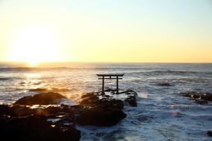 大洗磯前神社の鳥居の写真素材 [FYI04302688]