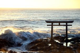 大洗磯前神社の鳥居の写真素材 [FYI04302689]