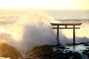 大洗磯前神社の鳥居の写真素材 [FYI04302690]