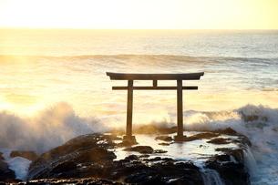 大洗磯前神社の鳥居の写真素材 [FYI04302691]