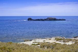 オーストラりア州のフリーマントルから沖合約18kmのインド洋に浮かぶ小島ロットネスト島から見た島の光景の写真素材 [FYI04302711]