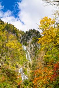 紅葉がきれいな天人峡の羽衣の滝の写真素材 [FYI04303156]