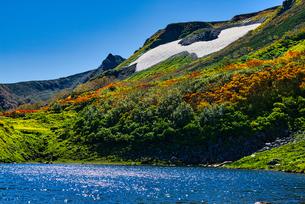 紅葉がきれいな秋の大雪高原の写真素材 [FYI04303165]