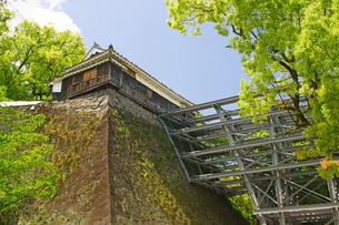 新緑の熊本城の写真素材 [FYI04303387]