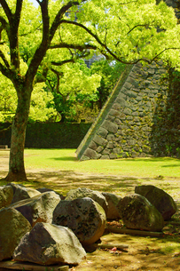 新緑の熊本城の写真素材 [FYI04303403]