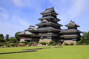 現存する日本最古の五重天守の松本城 日本100名城の写真素材 [FYI04303489]