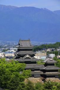 現存する日本最古の五重天守の松本城 日本100名城 展望台から天守閣を望むの写真素材 [FYI04303495]