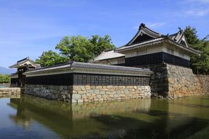 現存する日本最古の五重天守の松本城 日本100名城 内堀と石垣の写真素材 [FYI04303499]