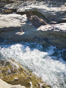 溶岩が固まり川となった。そして驚愕すべき露出する木の化石の写真素材 [FYI04303643]