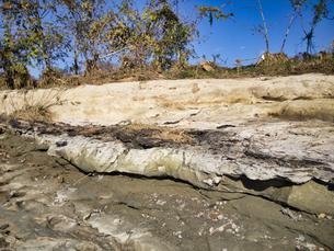衝撃的な光景 約200万年前の化石地層があさ川一帯に露出 向こう側は住宅街の写真素材 [FYI04303644]