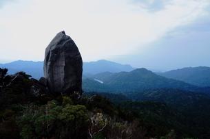 屋久島 ヤクスギランド 太忠岳の写真素材 [FYI04303978]