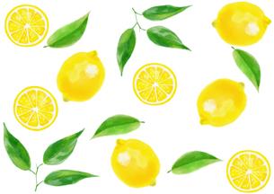 レモンのパターンのイラスト素材 [FYI04304071]