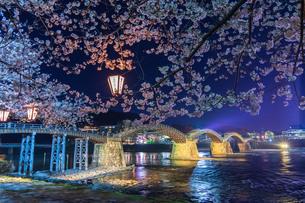 錦帯橋の夜桜IIの写真素材 [FYI04304400]