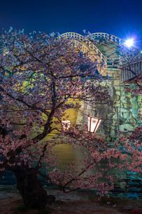 錦帯橋の夜桜IIIの写真素材 [FYI04304401]