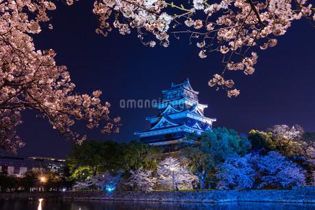広島城の夜桜の写真素材 [FYI04304402]