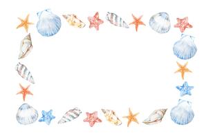 貝殻フレームのイラスト素材 [FYI04304489]