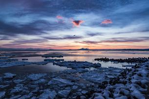 流氷と国後島の写真素材 [FYI04304722]