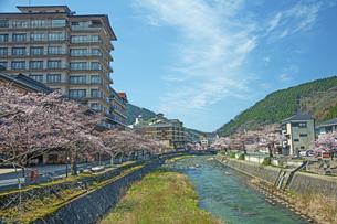 春のあつみ温泉の写真素材 [FYI04305165]
