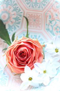 模様入り器にいれたオレンジ色バラと西洋甘菜(花韮)(生花)の写真素材 [FYI04305292]