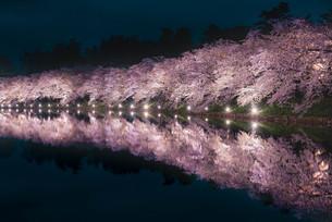 青森県・弘前市・弘前公園の桜(弘前さくらまつり)の写真素材 [FYI04305351]
