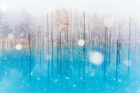 青い池の写真素材 [FYI04305680]