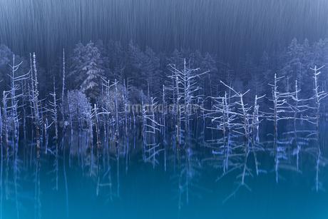 青い池の写真素材 [FYI04305681]