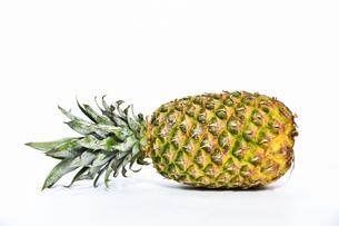 丸ごと1個のパイナップルの写真素材 [FYI04305969]