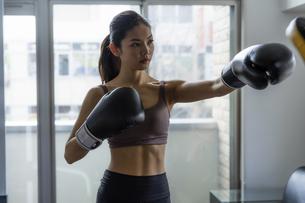 フィットネスボクシングでトレーニングをする日本人女性の写真素材 [FYI04306217]