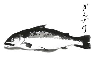 鮭のイラスト素材 [FYI04306254]