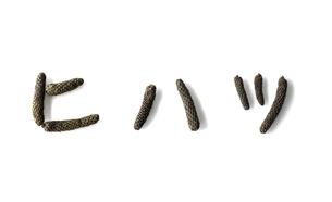 ヒハツ(ピパーチ、島胡椒)の実で描いた文字の写真素材 [FYI04306268]