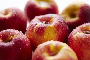 りんごの写真素材 [FYI04306402]