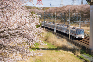 北総鉄道線上り 小室駅~白井駅の写真素材 [FYI04306850]