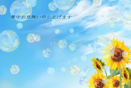 暑中お見舞い ひまわりのイラスト素材 [FYI04306857]