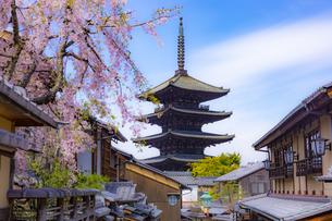春の京都・八坂の塔の写真素材 [FYI04306894]