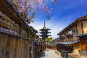 春の京都・八坂の塔の写真素材 [FYI04306895]