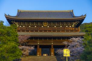 夕日を浴びる春の知恩院・三門の写真素材 [FYI04306911]