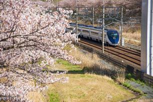満開の桜と京成成田空港線スカイライナー上り 白井駅~小室駅の写真素材 [FYI04306926]