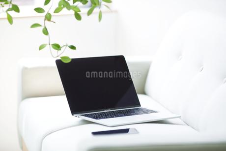 ノートパソコンとソファの写真素材 [FYI04307011]