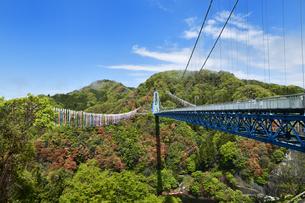 茨城県の竜神大吊橋の写真素材 [FYI04307142]